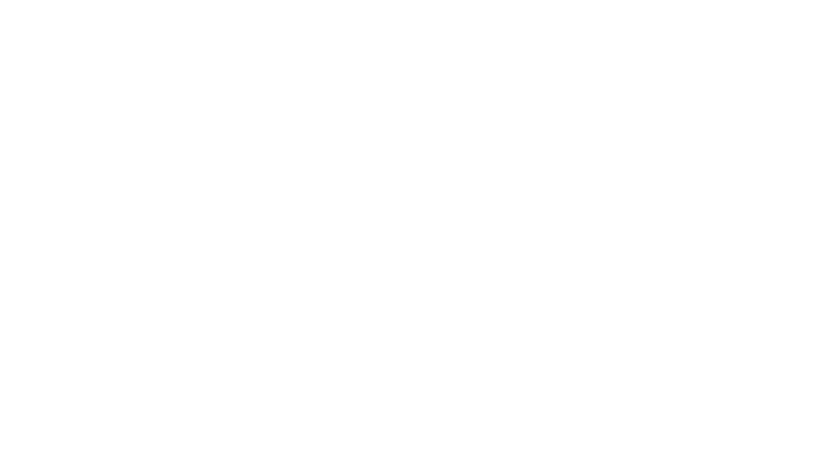 INTO_THE_WILD_title